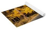Road In Autumn Forest Yoga Mat