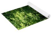 Road To Nature Yoga Mat