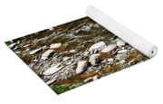 Schoharie Creek Lexington New York Catskill Mountains Yoga Mat