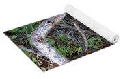 Sea Grape Jungle Yoga Mat