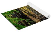 Seasons Change Yoga Mat