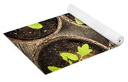 Seedlings Growing In Peat Moss Pots Yoga Mat