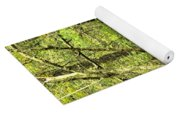 Shades Mountain Bridge In The Forest Yoga Mat