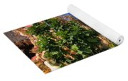 Silverman's Country Farm Yoga Mat