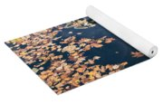 Skyscrapers' Reflections And Fallen Autumn Leaves Yoga Mat