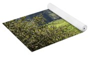 Sonoma Vineyards In The Sonoma California Wine Country 5d24515 Square Yoga Mat