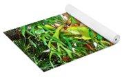Staghorn Fresco Yoga Mat