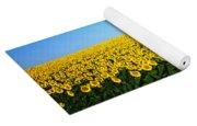Sunflower Field, North Dakota, Usa Yoga Mat