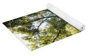 Sunlit Tree Tops Yoga Mat