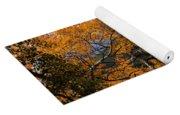 Sunlit Window Yoga Mat