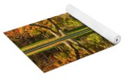 Sycamore Reflections Yoga Mat