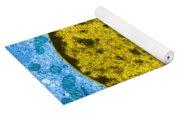 Tem Of Leydig Cell Yoga Mat