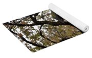 The Birdhouse Kingdom - Black-headed Grosbeak Yoga Mat