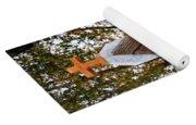 The Birdhouse Kingdom - Steller's Jay Yoga Mat
