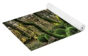 The Mossy Creatures Of The  Old Beech Forest 1 Yoga Mat