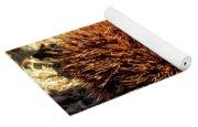 Tree Urchin Yoga Mat