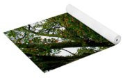 Tree With Scripture Yoga Mat