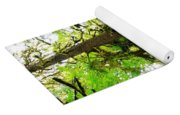 Trees In The Hoh National Rain Forest Yoga Mat