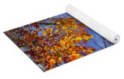 Treetops In Fall Forest Yoga Mat
