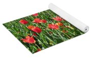 Tulips - Field With Love 61 Yoga Mat