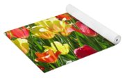 Tulips - Field With Love 65 Yoga Mat