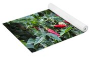 Turks Cap And Rain Drops Yoga Mat