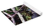 Turtle In The Glades Yoga Mat