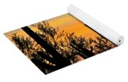 Twilight After Sunset Sonoran Desert Yoga Mat