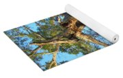 Twirling Tree Path Yoga Mat