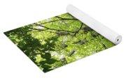 Up The Oak Tree Yoga Mat