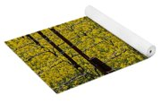 Vineyards Full Of Mustard Grass Yoga Mat