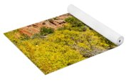 Virgin River - Zion Yoga Mat
