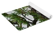 Weathered Bonsai Yoga Mat