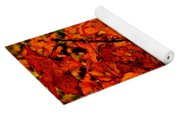 Where Has All The Red Gone - Autumn Leaves - Orange Yoga Mat