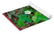 Wild Strawberry Plant - Fragaria Virginiana Yoga Mat