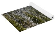 Winter Tree Yoga Mat