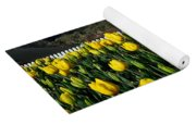 Yellow Tulips Before White Picket Fence Yoga Mat