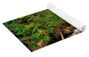 05 To The Three Sisters Island Yoga Mat