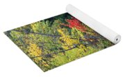 Autumn Tree Reflections Yoga Mat