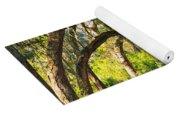 Bent Trees Yoga Mat