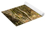 Forest Path Yoga Mat