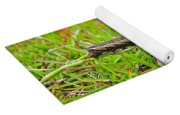 Tersa Sphinx Caterpillar Yoga Mat