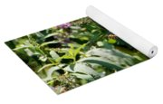 Tiger Swallowtail Butterfly Yoga Mat