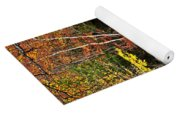 Fall Forest And River Landscape Yoga Mat