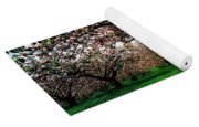 Apple Orchard, Co Armagh, Ireland Yoga Mat