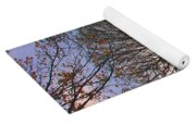 Autumn At British Camp Yoga Mat