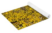 Autumn In Finland Yoga Mat