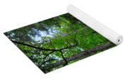 Beech Mountain Trail Acadia Yoga Mat