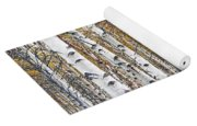 Birch Trees No.0644 Yoga Mat