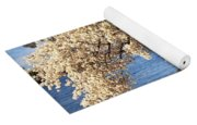 Blossoming Cherry Trees Yoga Mat